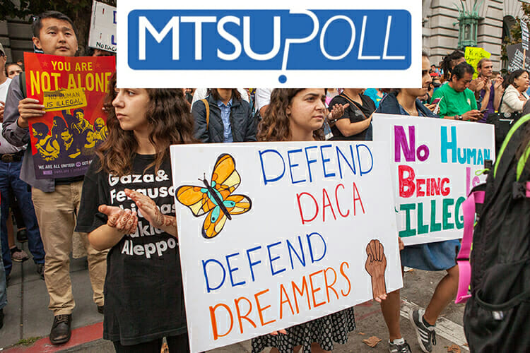 Poll: Voters support DACA, limited pot