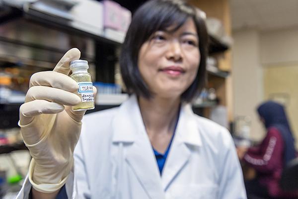 MTSU researchers take aim at metastatic breast cancer