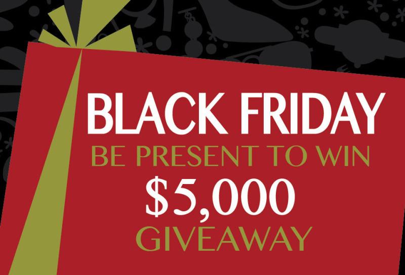 Black Friday at Stones River Mall