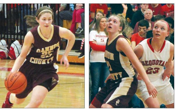 Lionettes stop the chop   Lionettes, Madison Walkup, sectionals