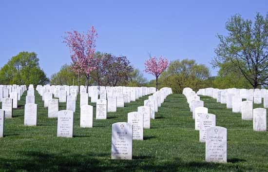 Military Sacrifice Honored On Memorial Day