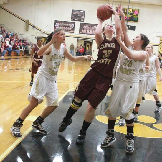 Back In Action: Ruehlen, Reed Return To Lionettes' Lineup