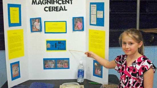 Auburn School Holds Science Fair