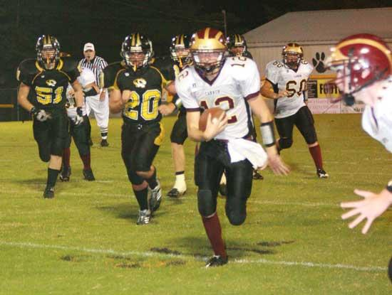 Rally By Lions Falls Short In Loss To Tigers