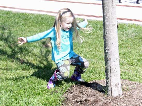 New Trees Add Beauty To Courthouse Square