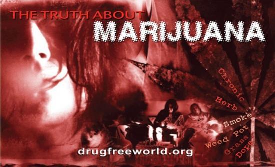 Is Marijuana A Safe Drug To Take?