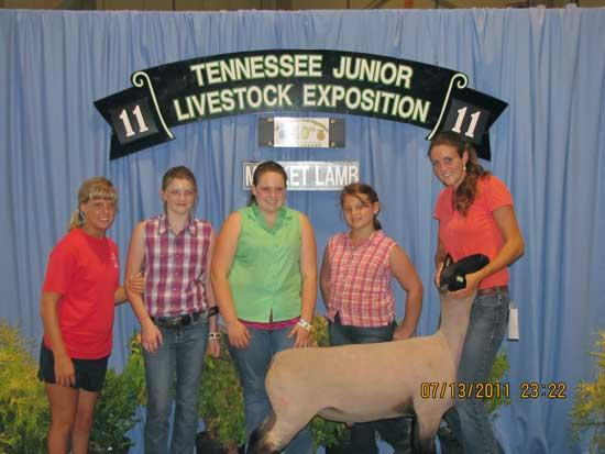 Cannon Countians Compete In 2011 Sheep Expo
