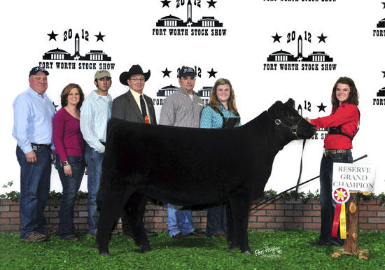 Higgins Exhibits Reserve Grand Champion Chiangus Female