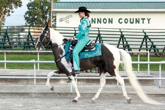 SAVE Horse Show Big Success