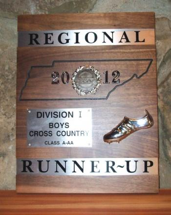 Cross country Top 20 at state