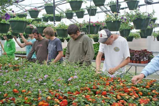 Dig It: Woodbury FFA Plant Sale Planned April 24