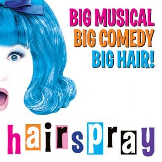HAIRSPRAY Coming To Arts Center July 8-24