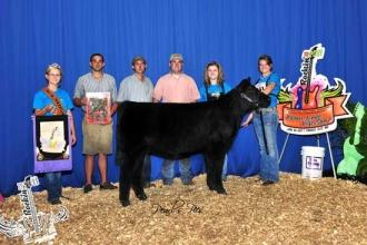 Allison Higgins Exhibits Grand Champion