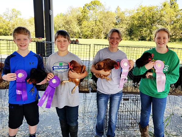 17 participate in 4-H Chick Chain