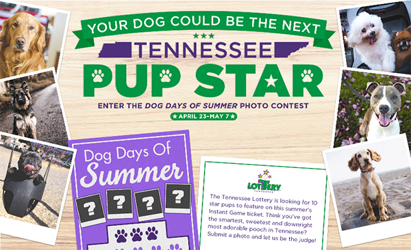 Lottery looking for Tennessee 'Pup Stars'