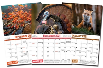 Entries Being Accepted For 2022 Tennessee Wildlife Calendar Photo Contest