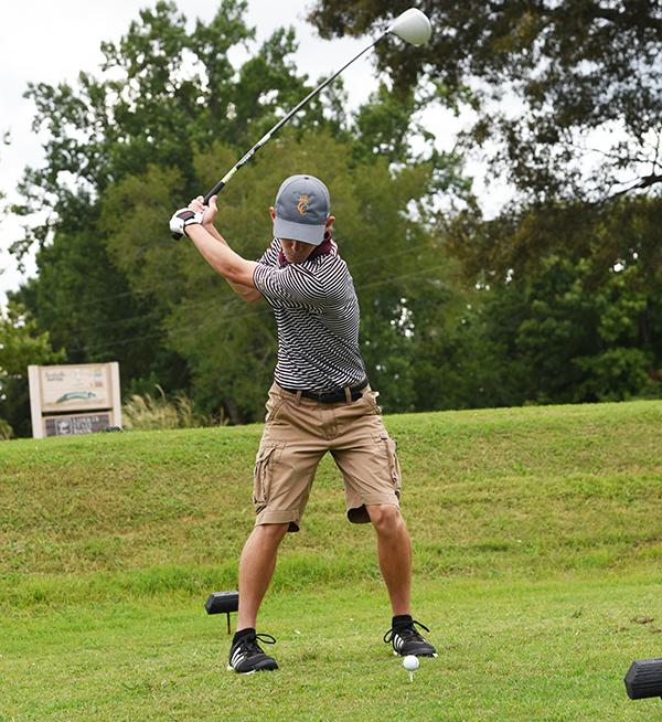 Lion golfers win district title
