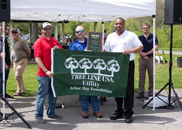 MTEMC recognized as Tree Line USA utility