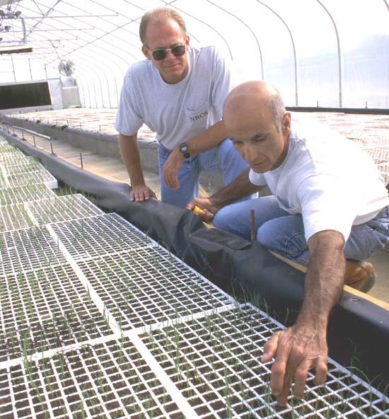 Environmental Workshop Planned Sept. 9 At CCHS Greenhouse