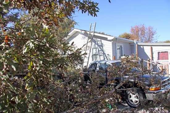Couple Feels 'Really Lucky' Even After Tree Buries Truck
