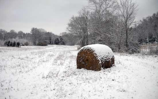 Snow Again Covers Cannon County