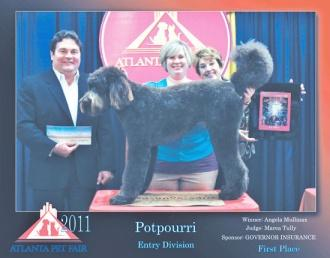 Local Groomer Wins Competition