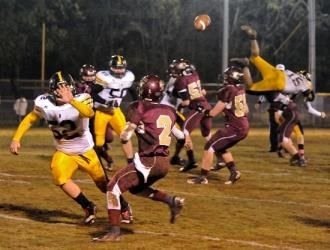 Bees Buzz By Lions, 48-16