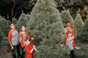 2020 Won't Stop You From Getting Perfect Christmas Tree